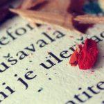 englas-blogg